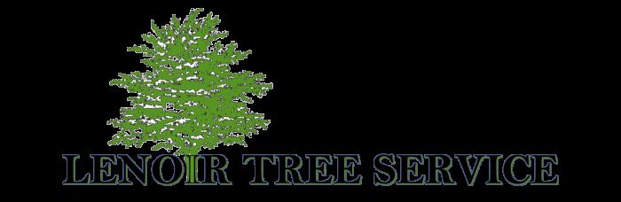 Lenoir Tree Service