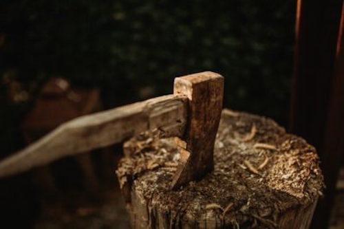 lenoir stump removal